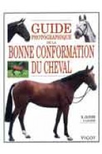 Guide photo de la bonne conformation du cheval.