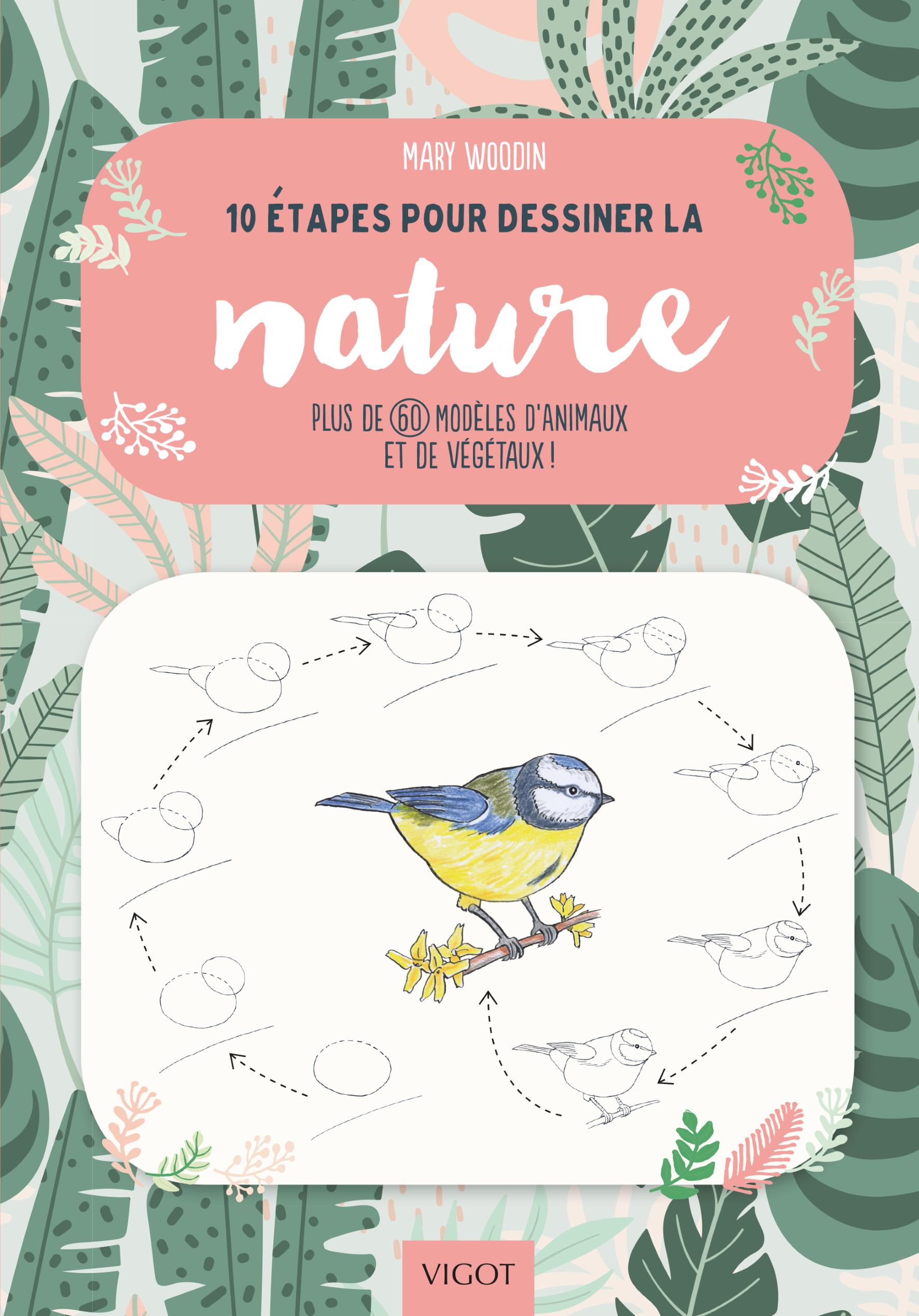 10 étapes pour dessiner la nature